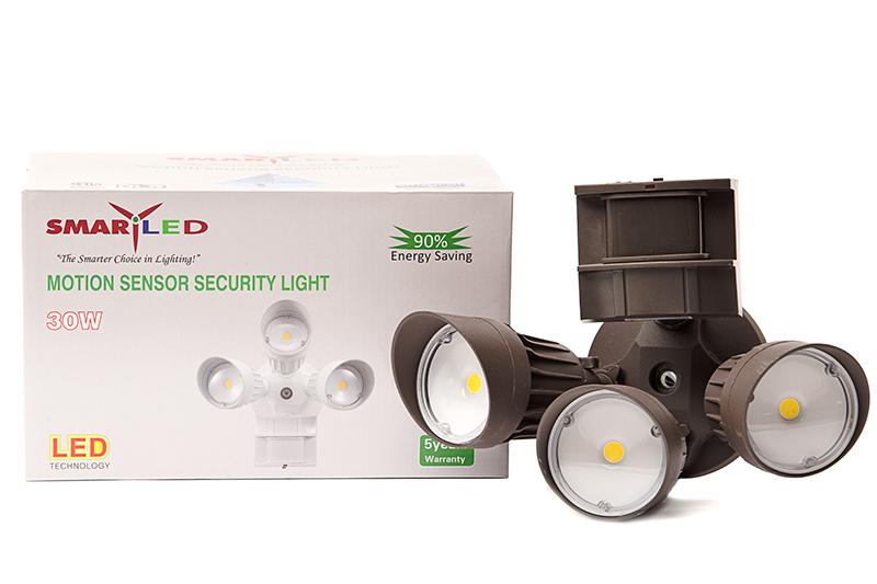 SECURITY 30 WATT SES-HG70-30W